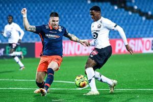 L'album photo du match entre le Montpellier HSC et le Lille OSC.