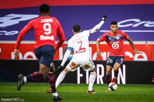 L'album photo du match entre le Lille OSC et le Stade Brestois 29.